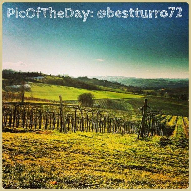 La #PicOfTheDay #turismoer di oggi arriva dai colli bolognesi e sa già di primavera ;D  Complimenti e grazie a @bestturro72