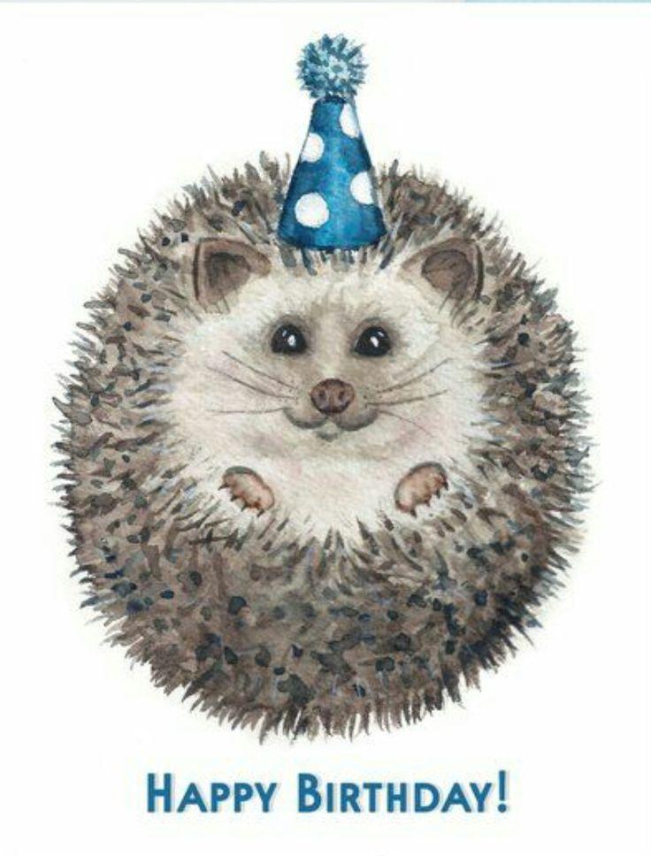 Ежик с днем рождения в картинках