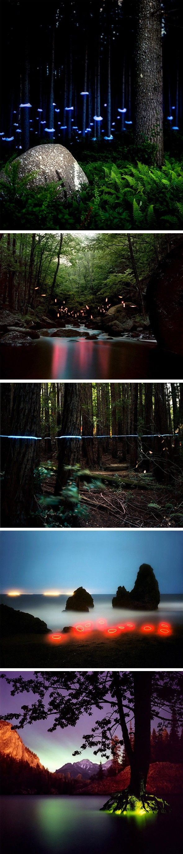 Installations lumineuses par Barry Underwood - Journal du Design