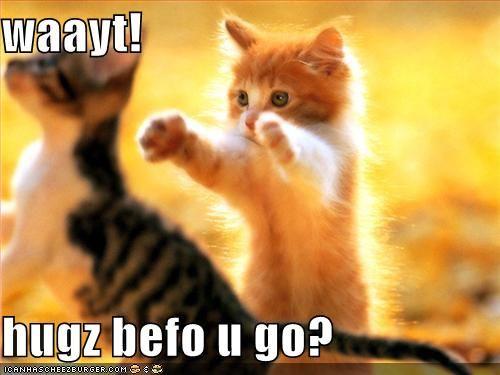 waayt! hugz befo u go?