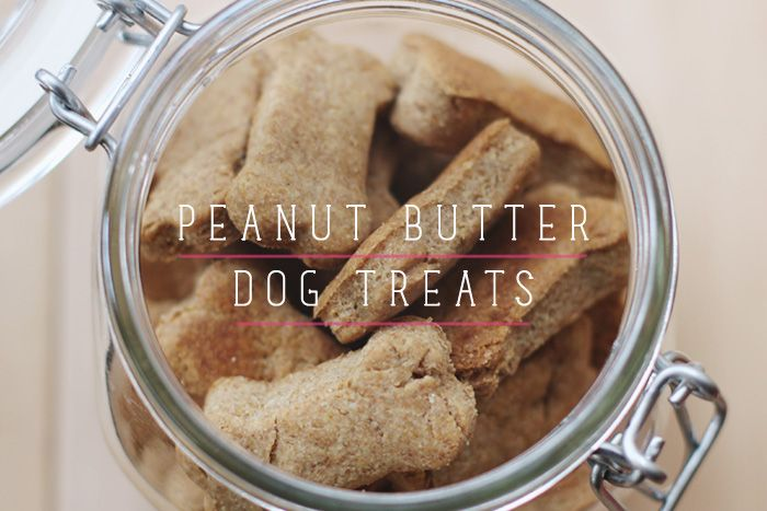 I made some super cute peanut butter dog treats the other day, and compared to store-bought treats, these are cheaper, more eco-friendly