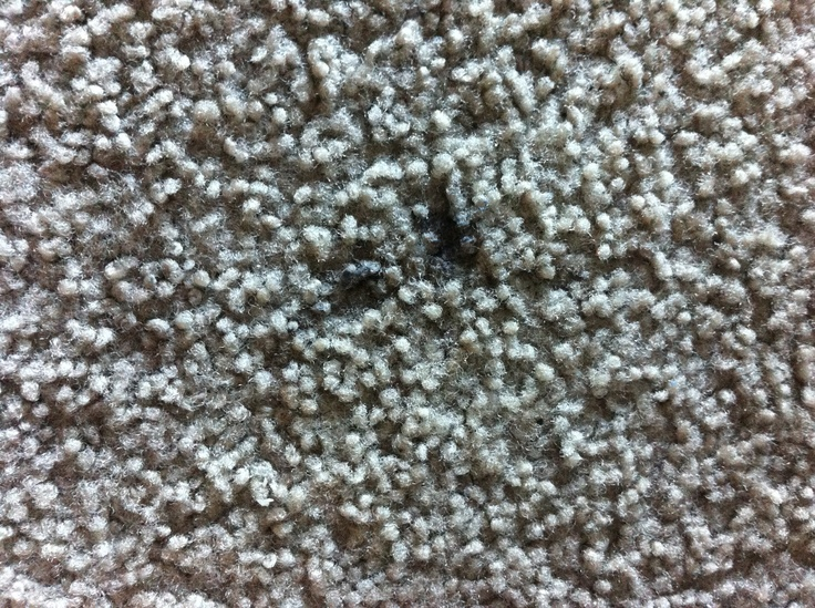 how to clean carpet stains with white vinegar
