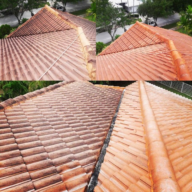 Pressure/Soft Washing commercial and residential