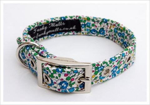 -Lily Dog Collar* Mabel's first collar