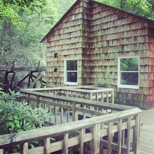 Roan Mountain State Park: TN & NC Images On Pinterest