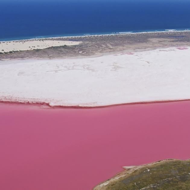 Lago Rosa, Lagoa Hutt  - Austrália Ocidental