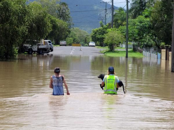 #RSPCA workers save dog from #Queensland #floods