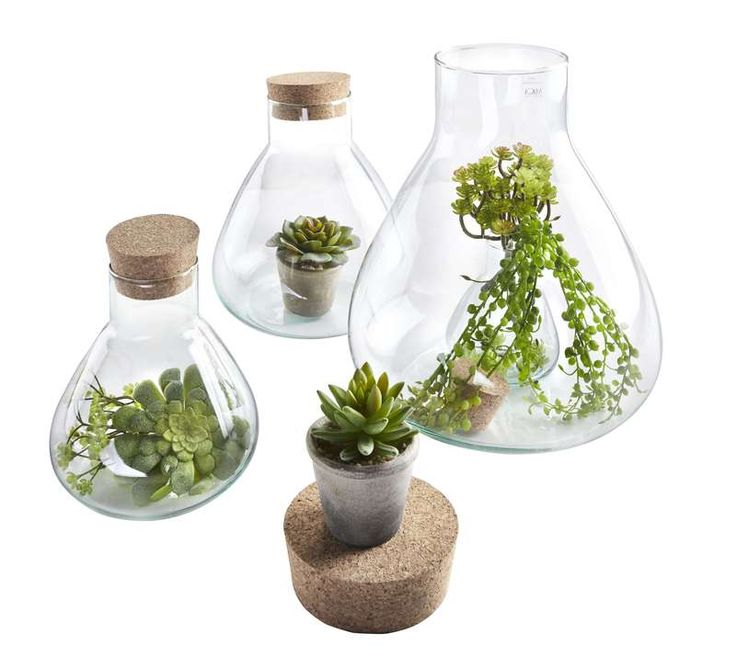 Sierpot Emily. leuke sierpot voor plantjes of mini terrarium. #prontowonen #droomwoonkamer
