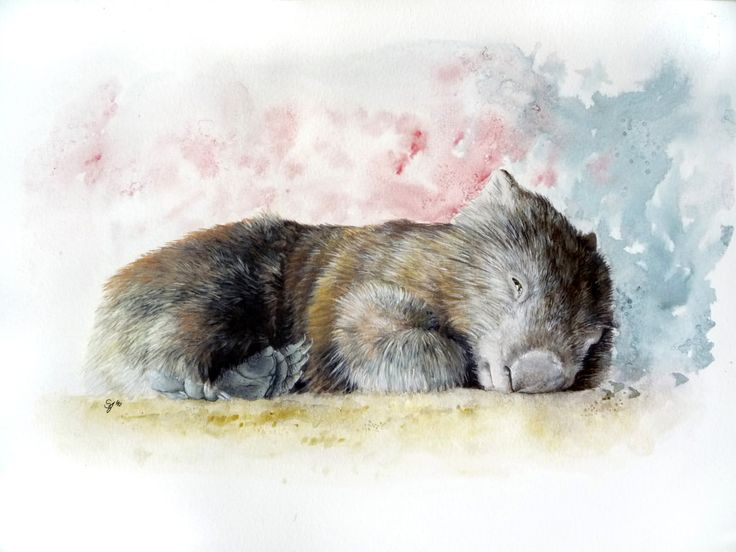 Wombat Watercolor (commission by ~Sejafin)
