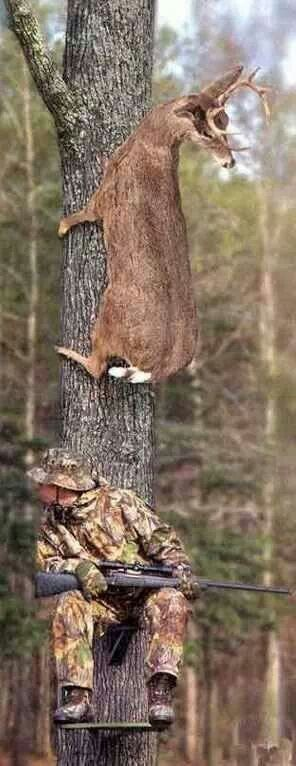 "This caption said, ""Redneck""!!! Bebe'!!! At the least he is not an observant person much less a hunter!!!"