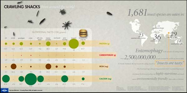 What is Entomophagy?