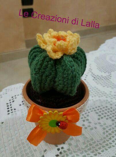 Cactus cappello del vescovo