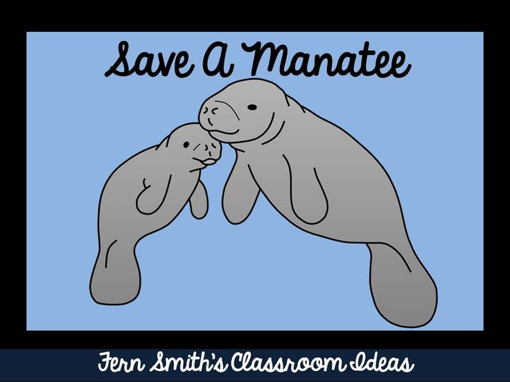 adopt a manatee essay How to help the homeless there are lots of other ways to help homeless people donating food and clothing to homeless shelters is a great way to help you could also.