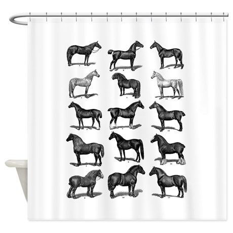 1000 Images About Horse Decor On Pinterest Equestrian Style Dressage Horses And White Horses