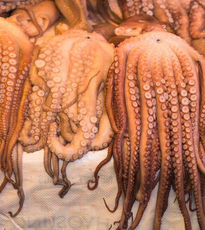 Octopus For Sale At Jagalchi Fish Market Busan South Korea Busan South Korea Busan South Korea