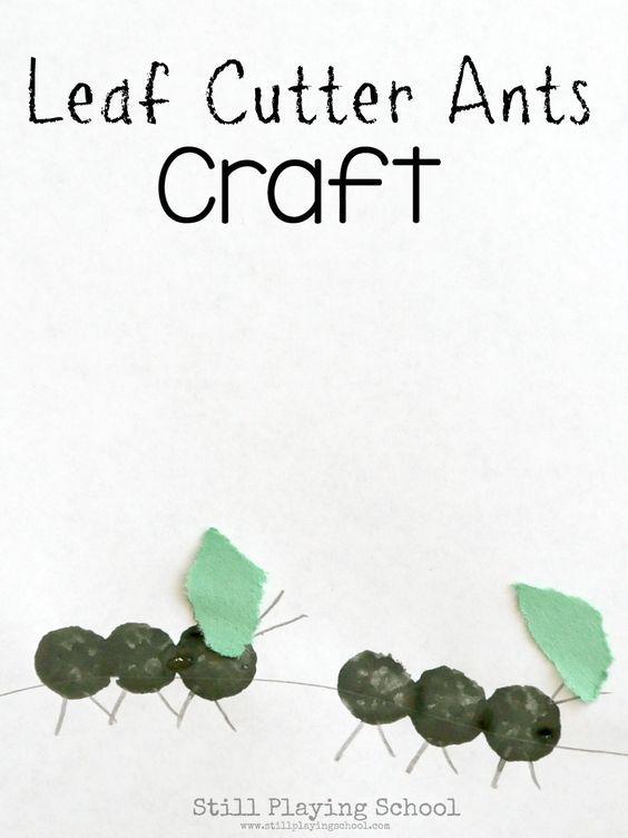 Leaf Cutter Ant Craft For Kids