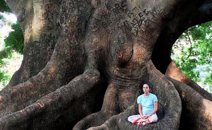 10 Best Spiritual Retreats in India