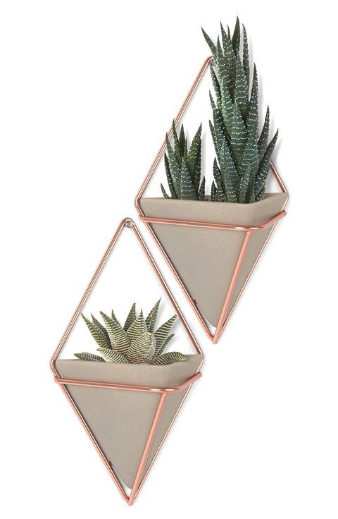 """Update any space with a chic pyramidal wall vessel featuring coppery hardware that can house plants, office items or other knick knacks. * 4 1/2"""" x 2 3/4"""" x 7 1/4"""". * 1.17 lbs. * Set of 2. * Resin/metal/plastic. * By Umbra; imported."""