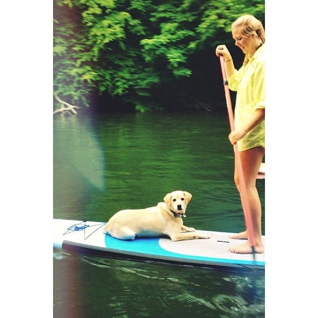 17 Best Ideas About Best Paddle Boards On Pinterest