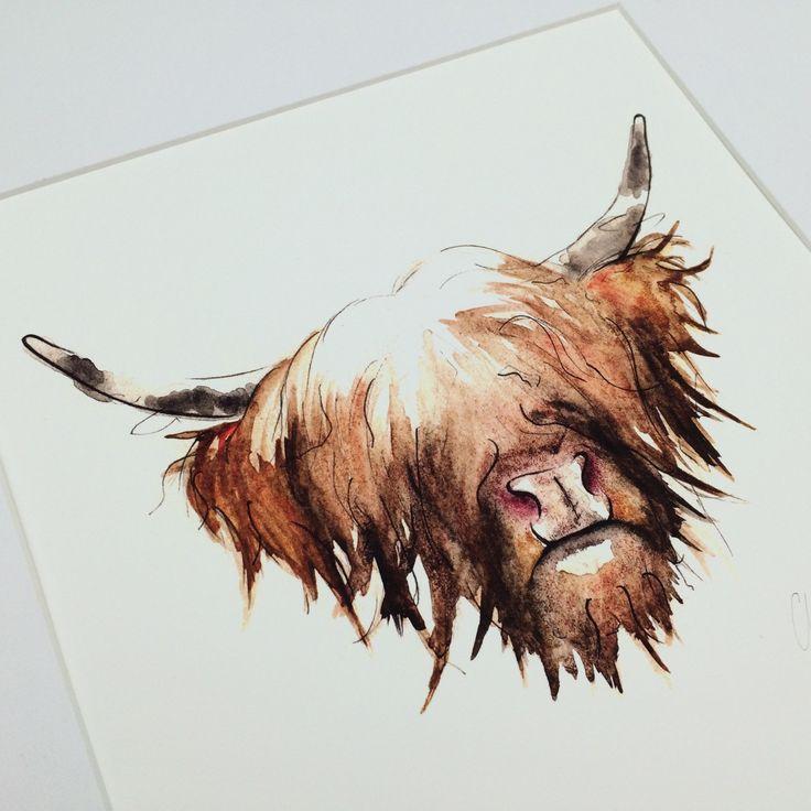 Highland cow watercolour. Claire Baird.