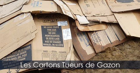 Conseils pratiques de #jardinage - Utilisation de cartons pour la conception d'une plate-bande sans enlever le gazon - Recycler le #carton au jardin - Photos de plates-bandes. Instructions: http://www.jardinage-quebec.com/guide/plate-bande-sans-enlever-gazon/amenager-plate-bande-4.html