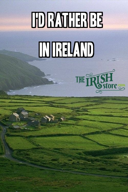 Wouldn't you? From incredible irish Sayings by TheIrishStore.com