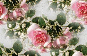 Розовые розы - Бесшовные фоны