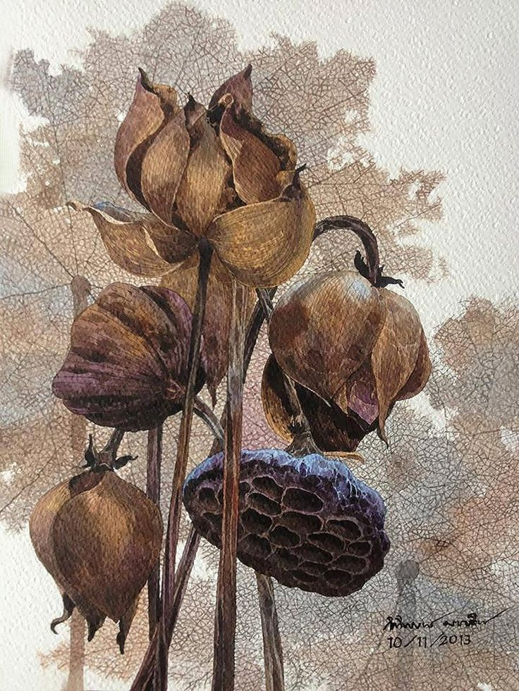 Осенние цветы от Kitipong Ti
