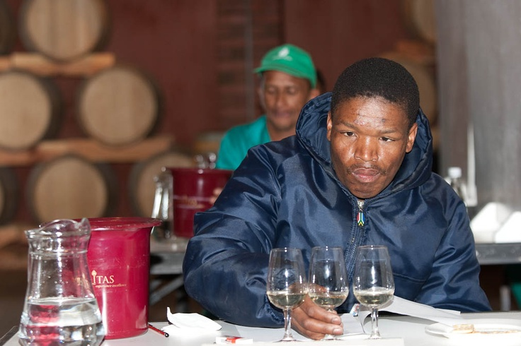 What might the cultivar be? Isaac Cenya of Fairview considers carefully