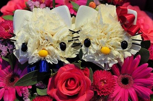 Hello Kitty Flowers =)
