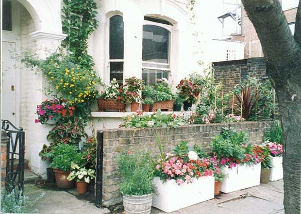 37 Best Images About Victorian Terrace Front Garden On