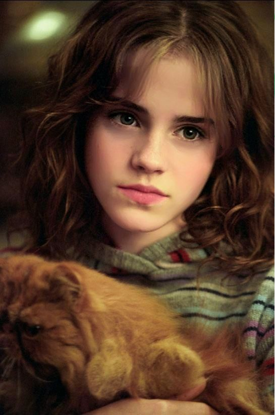 Awe Inspiring 17 Best Images About Hermione Granger On Pinterest Hermione Hairstyles For Women Draintrainus