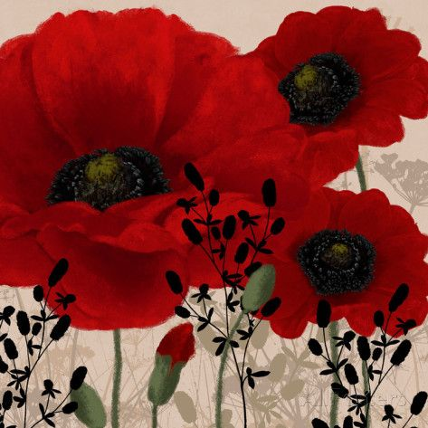 Red Poppies II Prints by Linda Wood - AllPosters.ca