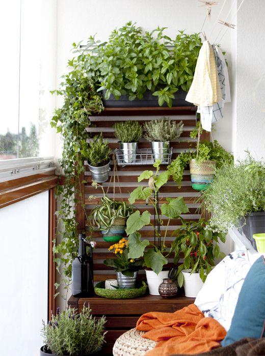 Les 25 meilleures idées concernant ikea pflanzen sur pinterest ...