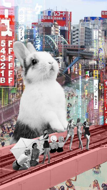 ♥ bunny seduction ♥
