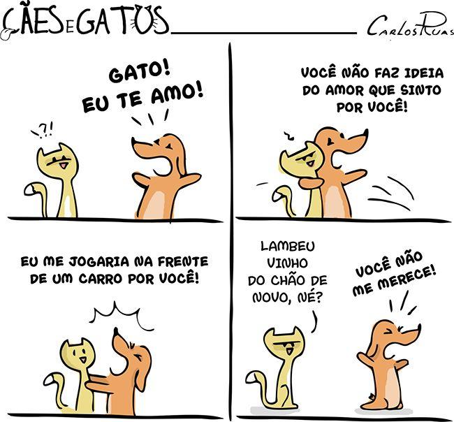 Cães e Gatos – Eu te amo!