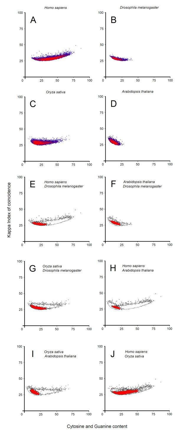 Promoter distributions in several species.