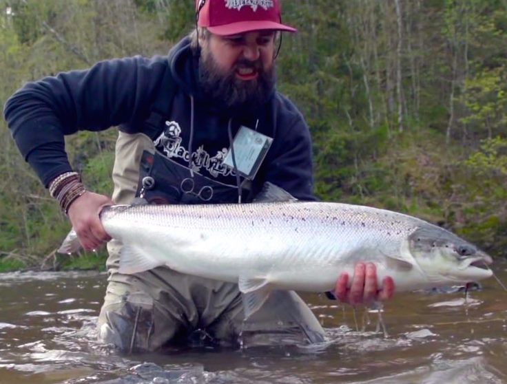 82 best images about salmon fishing on pinterest bass for Best bait for salmon fishing in the river