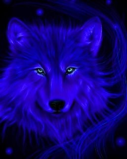 A purple wolf, can't ask for more than that