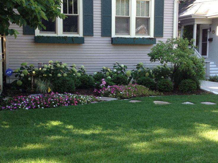 8 best small trees images on pinterest gardening for Ornamental trees for flower beds