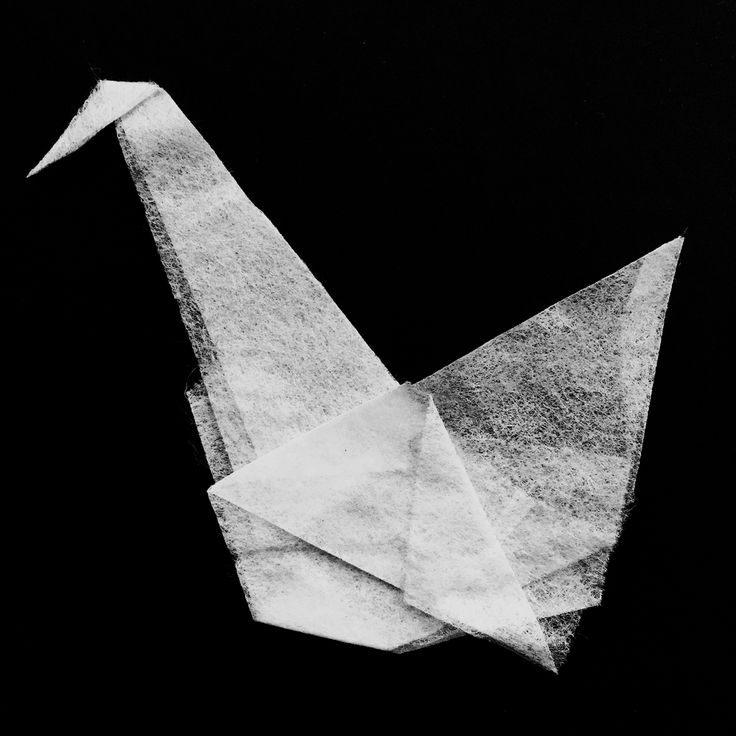 When a sheet of fabric softener trapped under a heavy load emerges as artwork... Inspiration is everywhere. #HappyAccident #Origami
