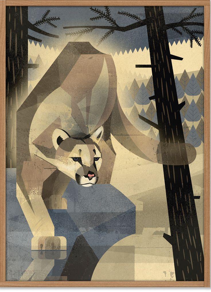 """Der """"Mountain Lion"""" ist ein neues Poster-Artwork des Hamburger Illustrators Dieter Braun. Auf vielen Reisen studiert Dieter Braun eingehend Tiere aller Art und zeichnet sie in einer Perfektion wie kein anderer. • Design: Dieter Braun..."""
