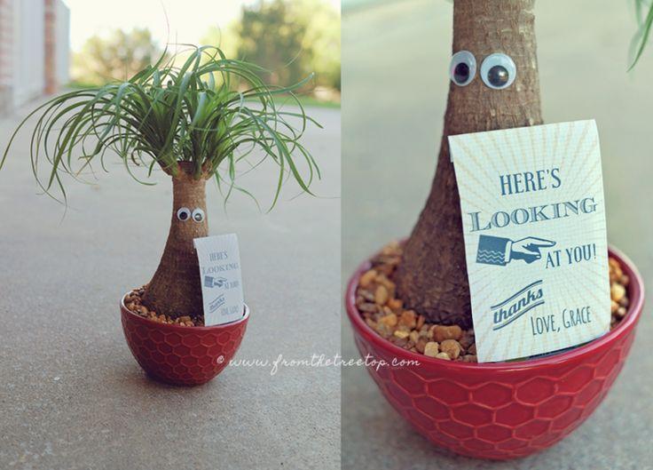 Funny and unique DIY teachers gift idea