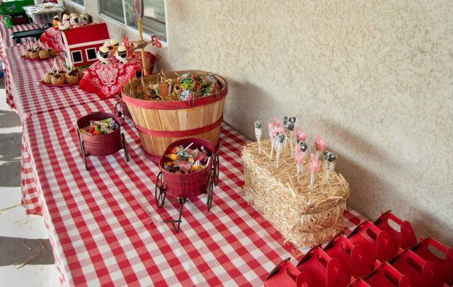 Gingham tablecloth gives this barnyard party a Country touch