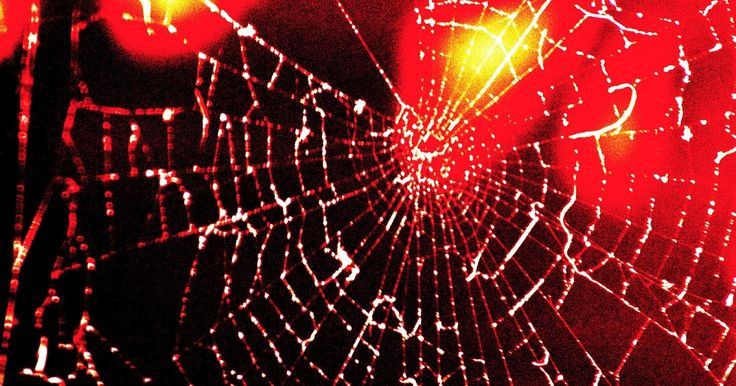 22 best spider woman images on pinterest spider webs