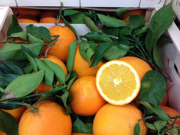 Untreated Navelinas Oranges begin to arrive from Italy. They are the first of the European season that we are really happy with and comfortable offering as the sweetness really has arrived in these. Other origins and varieties will follow through the winter months.
