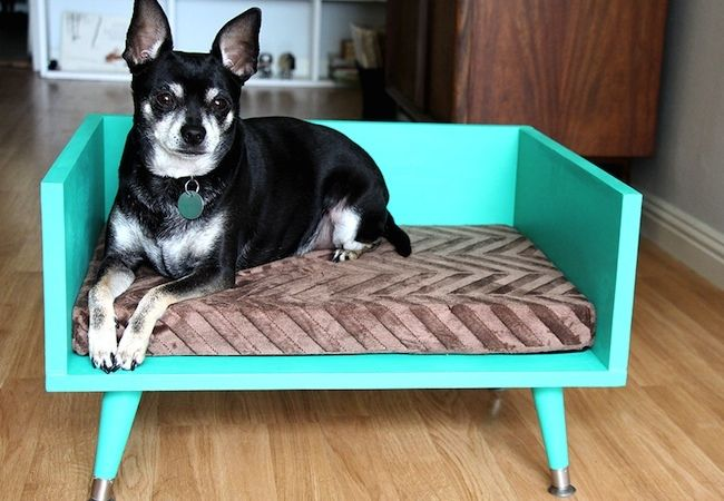 DIY Dog Bed - Modern