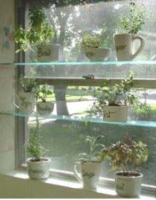 best 25 window herb gardens ideas on pinterest diy herb garden indoor herbs and herb garden. Black Bedroom Furniture Sets. Home Design Ideas