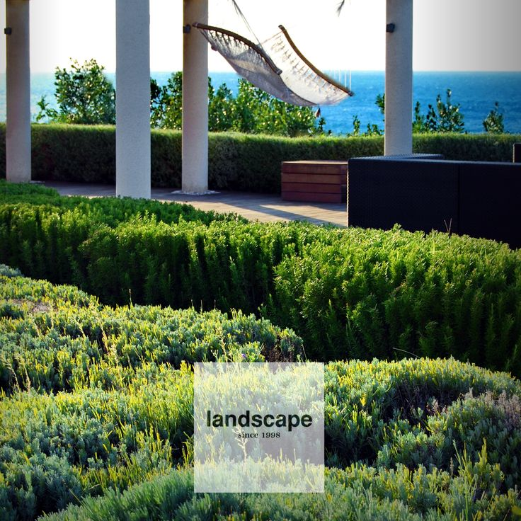 Mediterranean garden. High above the sea shores. With Lavender and Rosemary clouds flowing over the sandy surfaces. / design: Landscaped.o.o. / fb landscape slovenia / www.landscape.si /