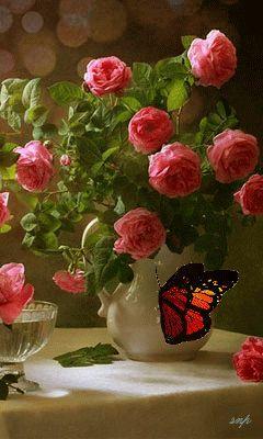 Красивые розы в белой вазе и бабочка.